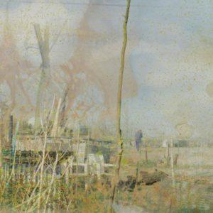 landscape for macrobiotics # 2 (detail ) | Robert Wevers