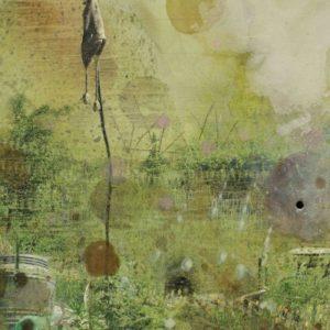 landscape for macrobiotics # 3 ( detail ) | Robert Wevers