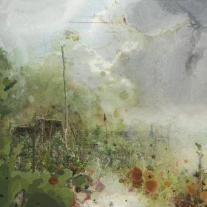 landscape for macrobiotics # 3 | Robert Wevers
