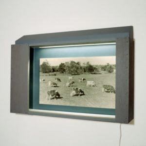 Landscape with ten Cows   Robert Wevers