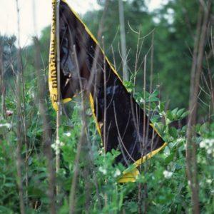 black flag | Robert Wevers